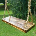 Charred Appalachian Wood Tree Swing