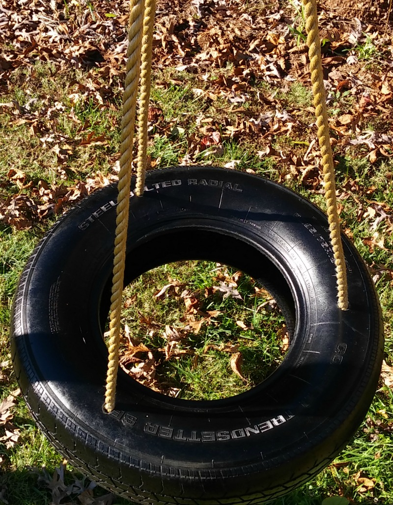 Spinster Tire Swing